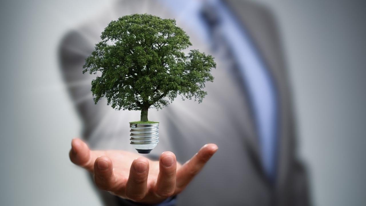 Crece industria de las energías limpias, cada vez más barata y más rentable